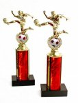 601C CESA TRADITIONAL TROPHIES