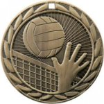 FE Series Medals -Volleyball  FE Iron Medal Awards