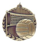 Millennium Medal -Volleyball Millennium Medallion Awards