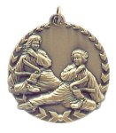Millennium Medal -Martial Arts Karate  Millennium Medallion Awards