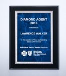 Black High Lustr Plaque with Blue Marble Plate Recognition Plaques