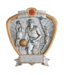 Signature Series Shield Awards -Basketball Signature Shield Resin Trophy Awards