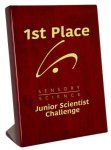Piano Finish Rosewood Stand Up Plaque Square Rectangle Awards