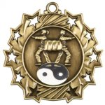 Ten Star Medal -Martial Arts  Ten Star Medal Awards